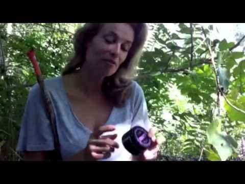 Frederique van der Wal: Earthworm Wrinkle Butter from Fresh Beauty Market