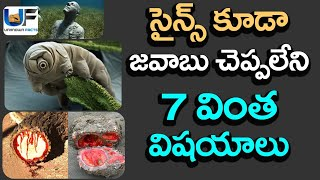 7 Natural Phenomenon Science Can't Explain | 7 Unbelievable Things In The World | UnknownFactsTelugu