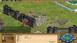 Age of Empires II - TIW - TAOE vs ViCiouS Gwarz 1v1