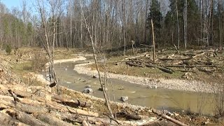 New Kentucky Trout Stream