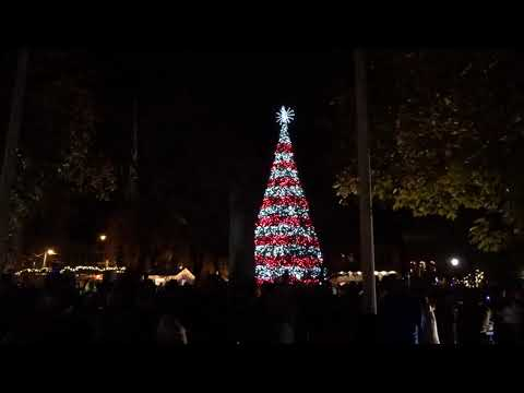 Christmas Tree Lighting Ceremony In Central Park, Downtown Johnstown PA,  2019