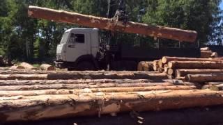 видео Доставка березовых дров