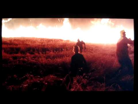 "Crickets and Fire scene from ""Days of Heaven"""