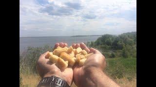 Ловля на Хлеб. Наживка для Рыбалки. Хлебная Корочка Рецепт. Готовим Супер Уловистую Насадку