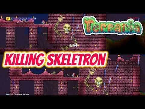 Terraria | Father And Son - Episode 2 - Killing Skeletron