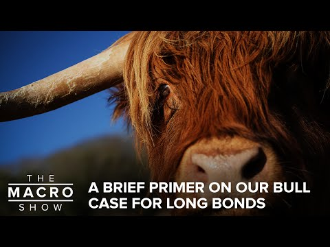 A Brief Primer On Our Bull Case For Long Bonds