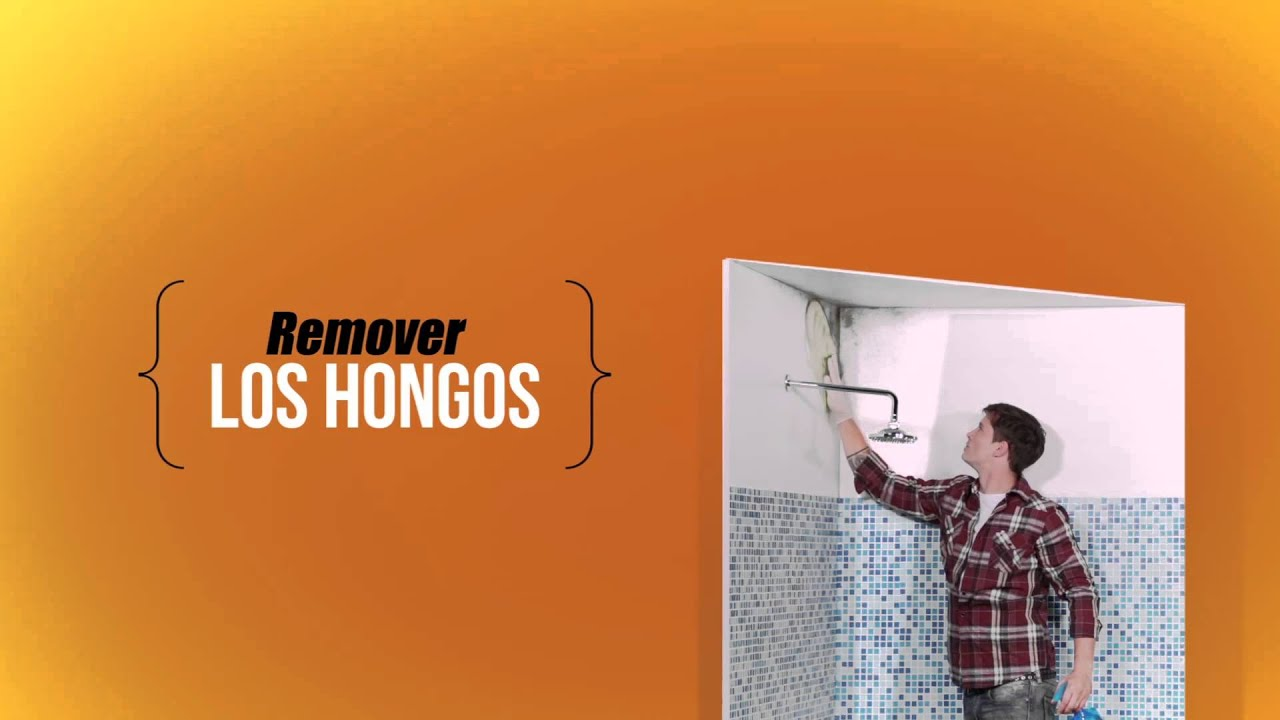 C mo pintar paredes con hongos tutorial paso a paso - Eliminar hongos de la pared ...