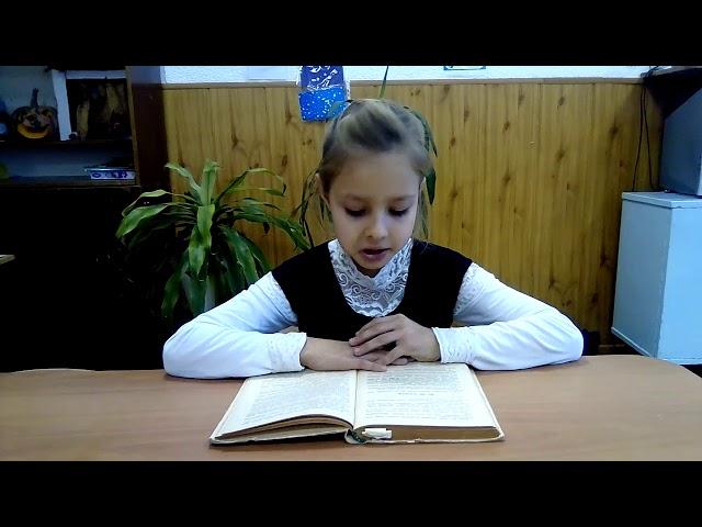 Изображение предпросмотра прочтения – СофияУстинова читает произведение «Стихотворение в прозе.Мы ещё повоюем.» И.С.Тургенева