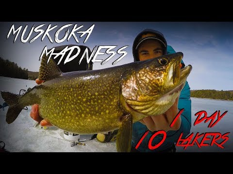 10 LAKERS 1 DAY! | Muskoka MADNESS Part 3