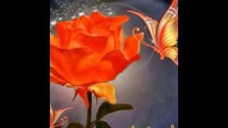 Feliz dia  del amor y  amistad  para mi familia y amigo