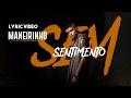 Maneirinho – Sem Sentimento (Lyric Video)