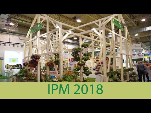 Kientzler Auf Der IPM 2018