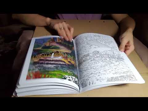 Silent flip through of Disney Dreams Collection Thomas Kincade Studios coloring book