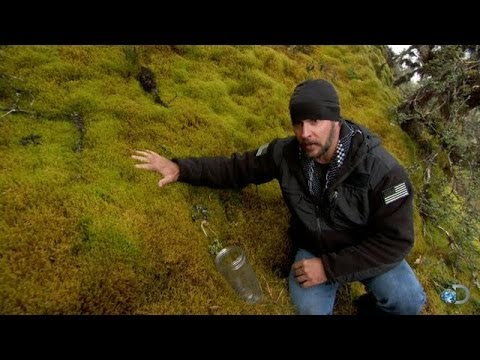 DIY Survival: Water You Can Drink Without Boiling | Dual Survival