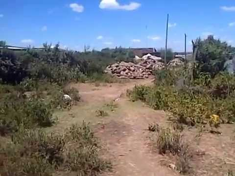 Plots of Land for SAle in Narok Kenya near Fanaka School with freehold title deed