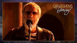 Yusuf / Cat Stevens – You Are My Sunshine [Official Music Video]   Tell 'Em I'm Gone