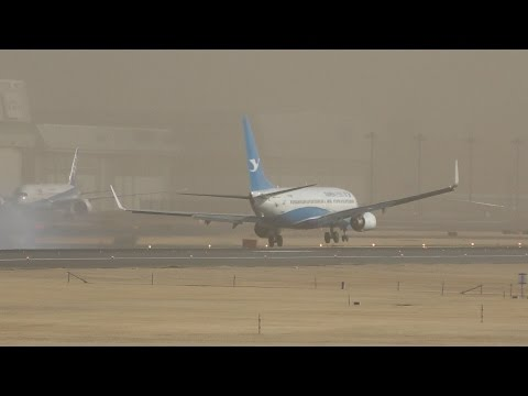 ✈4×Narrow body aircraft Crosswind landing @Narita Airport rwy16R(成田空港/WX970M)