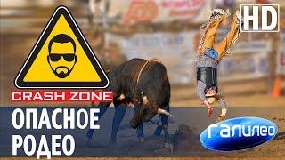 Как прокатиться на огромном быке. | CRASH ZONE + Галилео |