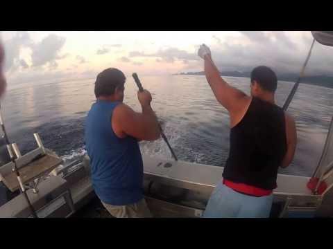 American Samoa Fishing 2012