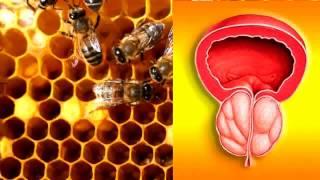 Пчелиная перга полезные свойства и применение