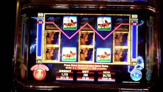 Buffalo Thunder slot machine bonus with full screen at Max Bet at Borgata Casino.