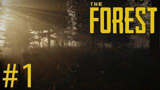 ME VOY A CAGAR EN LAS PATAS! - The Forest #1