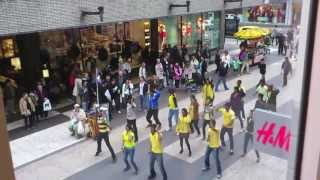 Chennai Super Kings (CSK) Flash Mob/Song Stockholm, Sweden 2013 IPL