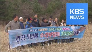 Wildlife Protection / KBS뉴스(News)