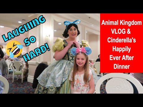 disney-vlog-day-4-at-the-animal-kingdom-|-cinderella's-happily-ever-after-dinner-at-1900-park-fare