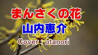 ★【まんさくの花】山内恵介 (Cober utanori)