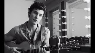 Shawn Mendes: The Tour Part VI