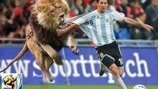 The Dumbest Football Soccer Players Ever   Football Funny Moments and Fails Compilation