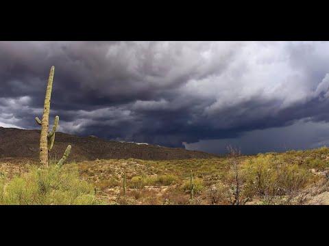 Rain in the desert shofar