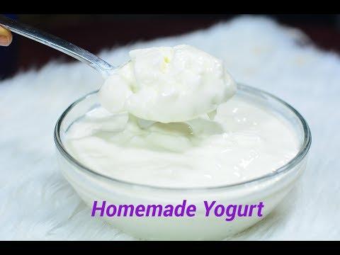 How To Make Yogurt (Without A Yogurt Maker) | Afropotluck