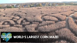 World's Largest Corn Maze!