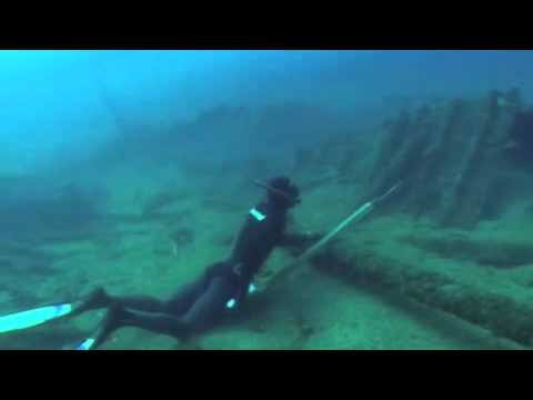 Spearfishing How To
