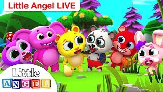 Finger Family, Wheels on the Bus + More Live Nursery Rhymes and Kids Songs by Little Angel
