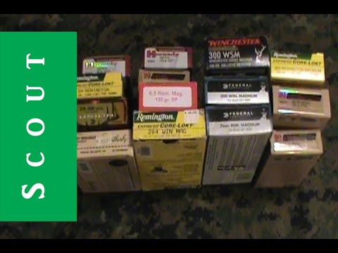 Hunting Rifle Calibers Explained - 204 Ruger To 45-70 Govt - Scout Hunter