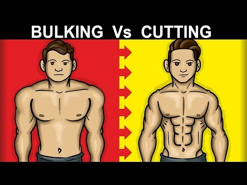 Should You BULK or CUT First (SKINNY FAT FIX)