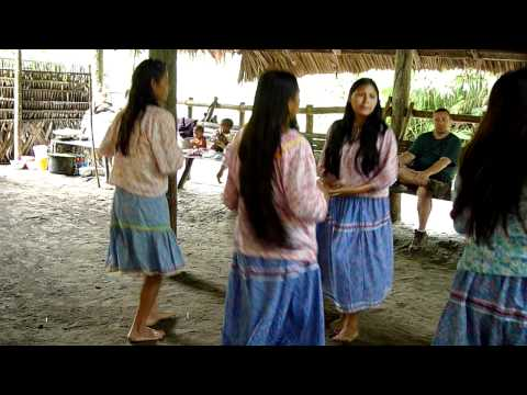 Kichwa women welcome ceremony dancing at the Napo Wildlife Center