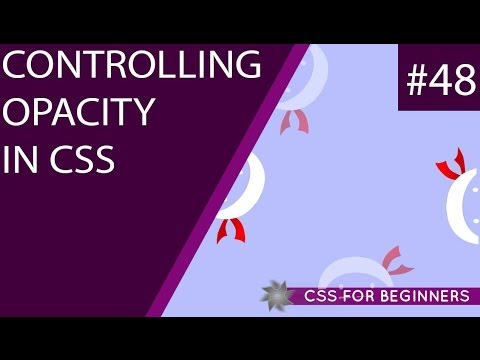 CSS Tutorial For Beginners 48 - Opacity