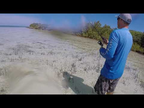DIY Bahamas Bonefish