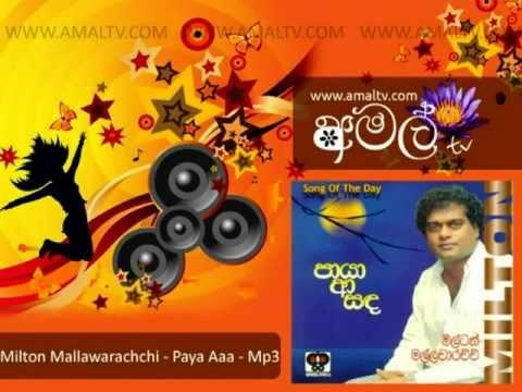 Milton Mallawarachchi - Paya Aaa Sanda - Mp3 - WWW.AMALTV.COM