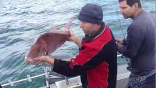Unreel Fishing Charters, James Rogers and Simon Rinaldi 9.3kg snapper in september