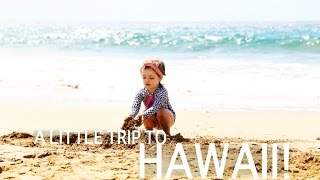 a trip to hawaii!