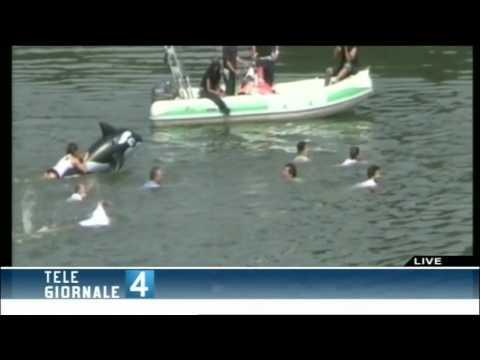 Big jump bagno nel fiume po t4 12.07.10 youtube