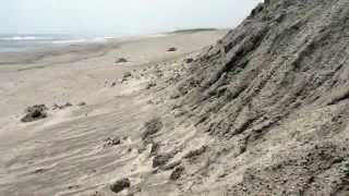 ここは静岡県浜松市南区中田島町の中田島砂丘に面した海岸です。 地球温...