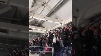 Eintracht-Fans beim Eishockey