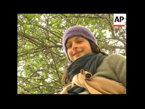 Tree-sitters mark first anniversary for tree-sitting protest