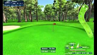 How to play X-Golf game